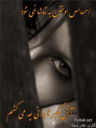 عكس تصویر تصاویر پیچك ، بهاربيست Www.Bahar-20.com